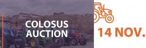 colosus auction 14 november